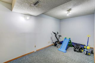 Photo 25: 27 Martinwood Road NE in Calgary: Martindale Detached for sale : MLS®# A1095419