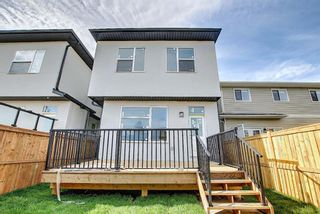 Photo 47: 7136 34 Avenue NW in Calgary: Bowness Detached for sale : MLS®# A1119333