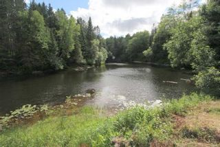 Photo 21: 300 Pinery Road in Kawartha Lakes: Rural Somerville Property for sale : MLS®# X4840235