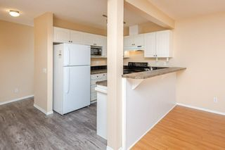 Photo 10: 97 230 EDWARDS Drive in Edmonton: Zone 53 Townhouse for sale : MLS®# E4262589