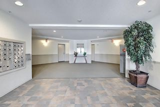 Photo 35: 1319 2395 Eversyde Avenue SW in Calgary: Evergreen Apartment for sale : MLS®# A1117927