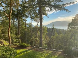 Photo 7: 106 Grans View Pl in : GI Salt Spring House for sale (Gulf Islands)  : MLS®# 862708