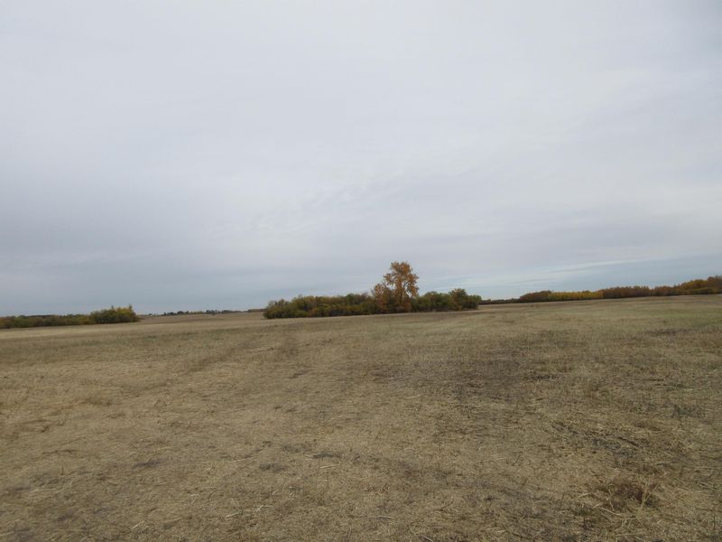 FEATURED LISTING: 55101 RR 270 Rural Sturgeon County