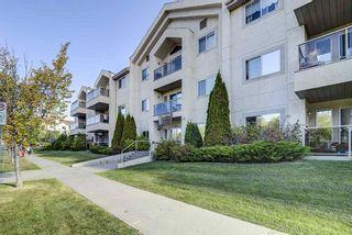 Photo 3: 103 6623 172 Street in Edmonton: Zone 20 Condo for sale : MLS®# E4224265