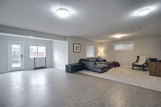 Photo 43: 138 Nolanshire Crescent NW in Calgary: Nolan Hill Detached for sale : MLS®# A1100424