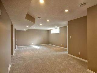 Photo 23: 305 Bayside Place SW: Airdrie Detached for sale : MLS®# A1116379