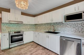 Photo 7: 4335 38 Street in Edmonton: Zone 29 House for sale : MLS®# E4245547
