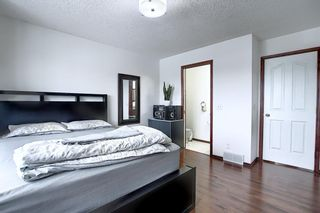 Photo 21: 47 Appleburn Close SE in Calgary: Applewood Park Detached for sale : MLS®# A1049300