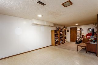 Photo 16: 4628 3 Street NE in Calgary: Greenview Detached for sale : MLS®# A1128741