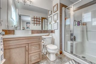 Photo 18: 262 Copperstone Circle SE in Calgary: Copperfield Detached for sale : MLS®# A1136994