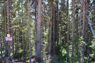 """Photo 9: 210 ALPINE Way in Smithers: Smithers - Rural Land for sale in """"Hudson Bay Mountain Estates"""" (Smithers And Area (Zone 54))  : MLS®# R2453895"""
