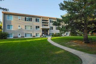 Photo 32: 7 6815 112 Street in Edmonton: Zone 15 Condo for sale : MLS®# E4230722