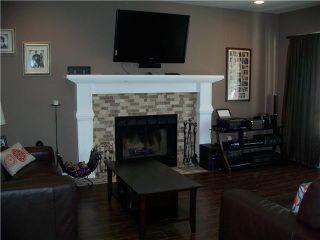Photo 3: 20380 OSPRING Street in Maple Ridge: Southwest Maple Ridge House for sale : MLS®# V1021276