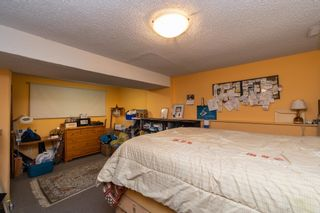 Photo 24: 49266 RGE RD 274: Rural Leduc County House for sale : MLS®# E4258454
