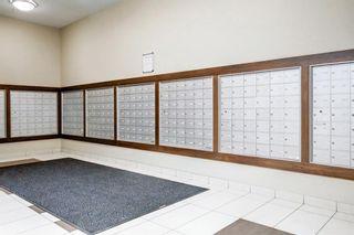 Photo 39: 1510 8710 HORTON Road SW in Calgary: Haysboro Apartment for sale : MLS®# A1052227