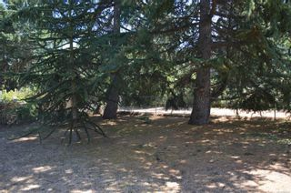 Photo 21: 776 Anderton Rd in Comox: CV Comox Peninsula House for sale (Comox Valley)  : MLS®# 882432
