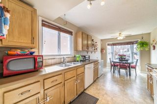 Photo 6: 49 Templeson Crescent NE in Calgary: Temple Detached for sale : MLS®# A1089563