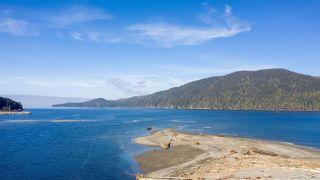Photo 44: 16925 Tsonoqua Dr in Port Renfrew: Sk Port Renfrew House for sale (Sooke)  : MLS®# 837813