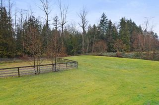 Photo 16: 26613 62 Avenue in Langley: County Line Glen Valley House for sale : MLS®# R2280174