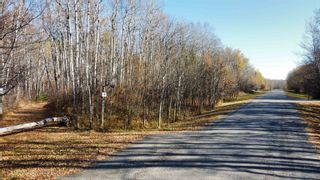 Photo 2: 15 54023 RGE RD 280: Rural Parkland County Rural Land/Vacant Lot for sale : MLS®# E4266505