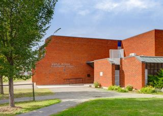 Photo 49: 944 Maplecroft Road SE in Calgary: Maple Ridge Detached for sale : MLS®# A1147511