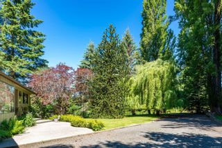 Photo 46: 785 Evergreen Rd in : CR Campbell River Central House for sale (Campbell River)  : MLS®# 877473