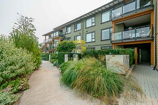 Main Photo: #103 23285 Billy Brown Rd.: Fort Langley Condo for rent (Langley)