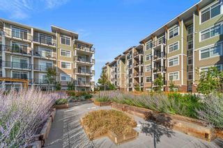 """Photo 1: 215 20696 EASTLEIGH Crescent in Langley: Langley City Condo for sale in """"The Georgia"""" : MLS®# R2598741"""