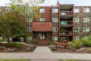 Photo 27: 16 10160 119 Street in Edmonton: Zone 12 Condo for sale : MLS®# E4200093