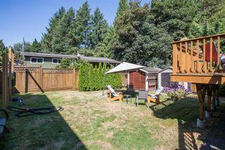Photo 29: 11641 212 Street in Maple Ridge: Southwest Maple Ridge House for sale : MLS®# R2607280
