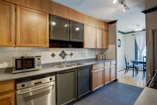 Photo 11: 203 917 18 Avenue SW in Calgary: Lower Mount Royal Apartment for sale : MLS®# A1099255