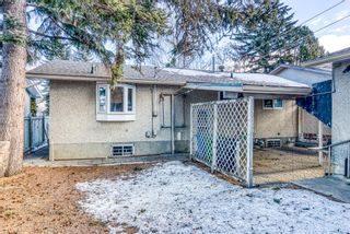 Photo 30: 345 Whitney Crescent SE in Calgary: Willow Park Detached for sale : MLS®# A1061580
