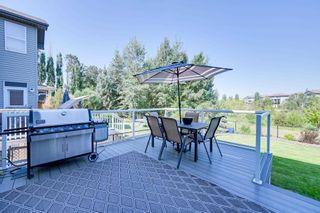 Photo 46: 12312 20 Avenue in Edmonton: Zone 55 House for sale : MLS®# E4254119
