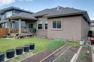 Photo 40: 68 Enchanted Way: St. Albert House for sale : MLS®# E4248696
