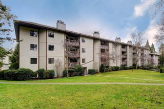 Photo 1: 310 75 W Gorge Rd in : SW Gorge Condo for sale (Saanich West)  : MLS®# 863938