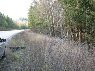 Photo 4: Lot 1 Trans Canada Hwy: Sorrento Land Only for sale (Shuswap)  : MLS®# 10171991