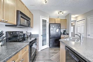 Photo 12: 9411 Stein Way in Edmonton: Zone 14 House for sale : MLS®# E4240303