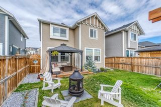 Photo 38: 1837 Reunion Terrace NW: Airdrie Detached for sale : MLS®# A1149599