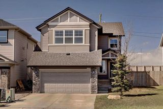 Photo 38: 205 CHAPALINA Mews SE in Calgary: Chaparral Detached for sale : MLS®# C4241591