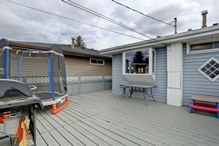 Photo 26: 3303 39 Street SE in Calgary: Dover Detached for sale : MLS®# A1084861