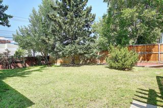 Photo 29: 10443 Wapiti Drive SE in Calgary: Willow Park Detached for sale : MLS®# A1128951