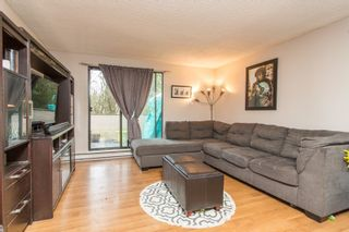 """Photo 15: 103 9150 SATURNA Drive in Burnaby: Simon Fraser Hills Townhouse for sale in """"Mountainwood"""" (Burnaby North)  : MLS®# R2541490"""