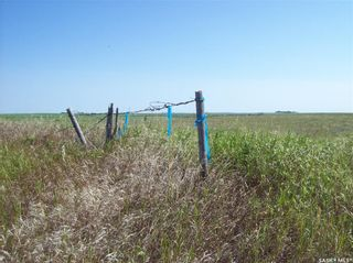 Photo 18: Eagle Creek Acreage 80 Acres in Asquith: Lot/Land for sale : MLS®# SK863384