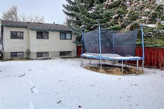 Photo 34: 823 Ranchview Circle NW in Calgary: Ranchlands Residential for sale : MLS®# A1060313