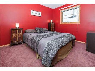 Photo 31: 317 CITADEL HILLS Circle NW in Calgary: Citadel House for sale : MLS®# C4112677