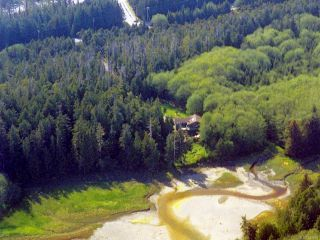 Photo 35: 1230 Pacific Rim Hwy in TOFINO: PA Tofino House for sale (Port Alberni)  : MLS®# 837426