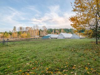 Photo 35: 1135 Corcan Rd in : PQ Qualicum North House for sale (Parksville/Qualicum)  : MLS®# 859985