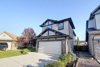 Photo 43: 410 DRAKE LANDING Point: Okotoks Detached for sale : MLS®# A1026782