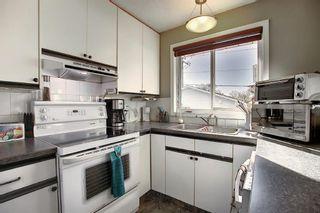 Photo 5: 1711 65 Street NE in Calgary: Pineridge Detached for sale : MLS®# A1038776