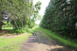 Photo 12: 49068 Highway 21: Rural Camrose County House for sale : MLS®# E4204787